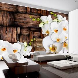 Papier peint - Blooming orchids