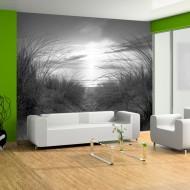 Papier peint  plage (noir et blanc)