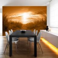 Papier peint  plage (sépia)