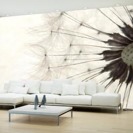 Papier peint - White Dandelion