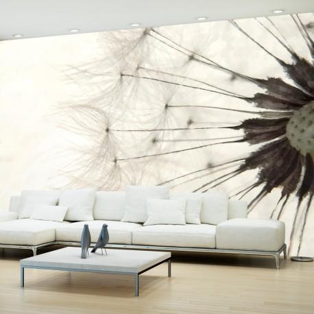 Papier peint  White Dandelion
