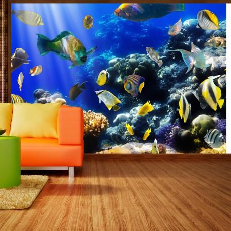Papier peint  Underwater adventure