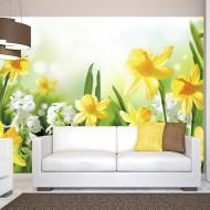 Papier peint  Spring walk