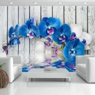 Papier peint  Cobaltic orchid