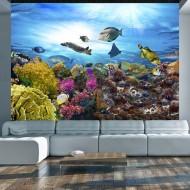 Papier peint  Coral reef