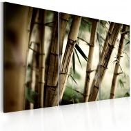 Tableau  forêt tropicale