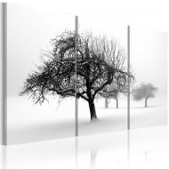 Tableau  Arbres dans le brouillard