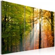 Tableau  Forêt dautomne