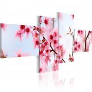 Tableau  Beauté de la fleur de cerisier