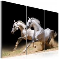 Tableau  chevaux  force et dynamique