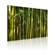 Tableau  Bambou et vert