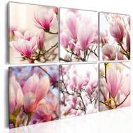 Tableau  Magnolias dans le Sud