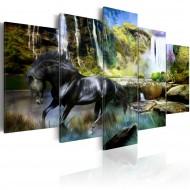 Tableau  Cheval noir sur fond de Cascade Paradis