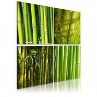 Tableau  Bambous