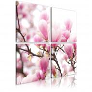 Tableau  Magnolia fleurissante