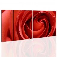 Tableau  Passionate rose