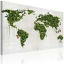 Tableau - Le monde vert des papillons