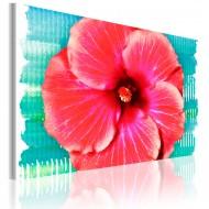 Tableau  Hawaiian flower