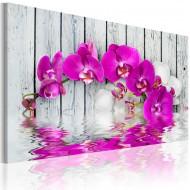 Tableau  harmonie orchidée