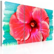 Tableau  Hawaiian flower  triptych