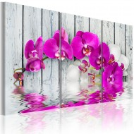 Tableau  harmony orchid  Triptych