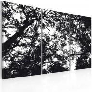 Tableau  Forêt dense