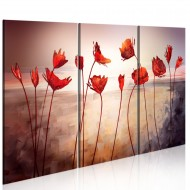 Tableau  Bright red poppies