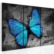Tableau  Etude dun papillon  triptyque