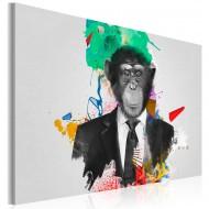 Tableau  Mr Monkey