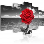 Tableau  Colour of love
