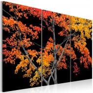 Tableau  Autumn reflection
