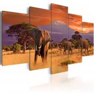 Tableau  Afrique éléphants
