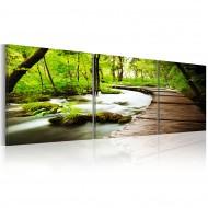 Tableau  Forest Brook