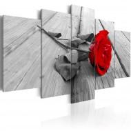 Tableau  Rose sur bois