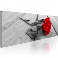 Tableau  Carmine rose