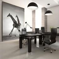 Papier peint  Girafes