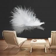 Papier peint  White feather