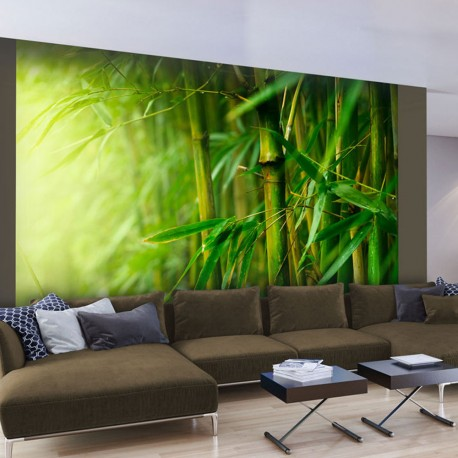 Papier peint  jungle  bambou