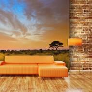 Papier peint  South African sunset