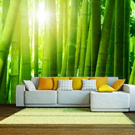 Papier peint  Soleil et bambou