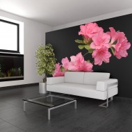 Papier peint  Azalea in Black