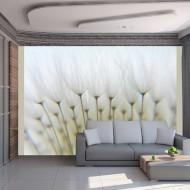 Papier peint  Forêt de pissenlits