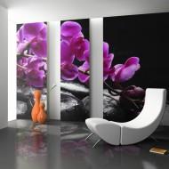 Papier peint  Moment de détente  orchidée et pierres zen