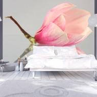Papier peint  Fleur de magnolia solitaire