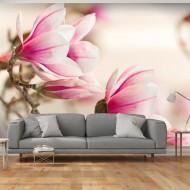 Papier peint  Branch of magnolia tree