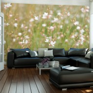 Papier peint  Petites fleurs blanches