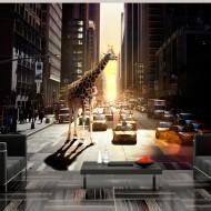 Papier peint  Girafe à New York