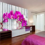 Papier peint  Violet orchids with water reflexion