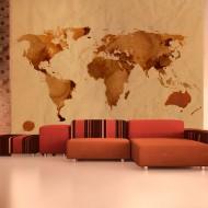 Papier peint  Tea map of the World