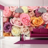 Papier peint  Roses pastels